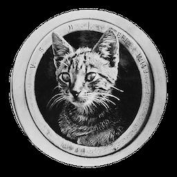 cat_in_cannon_256